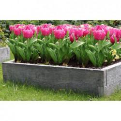 rabata-kwiaty-warzywa-zielnik